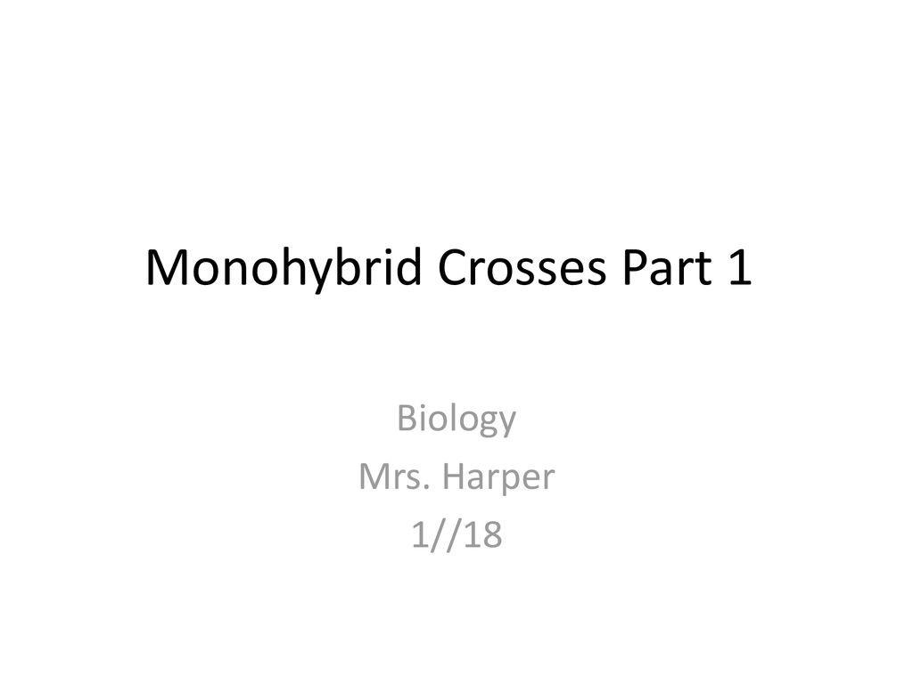 30 Monohybrid Crosses Worksheet Answers
