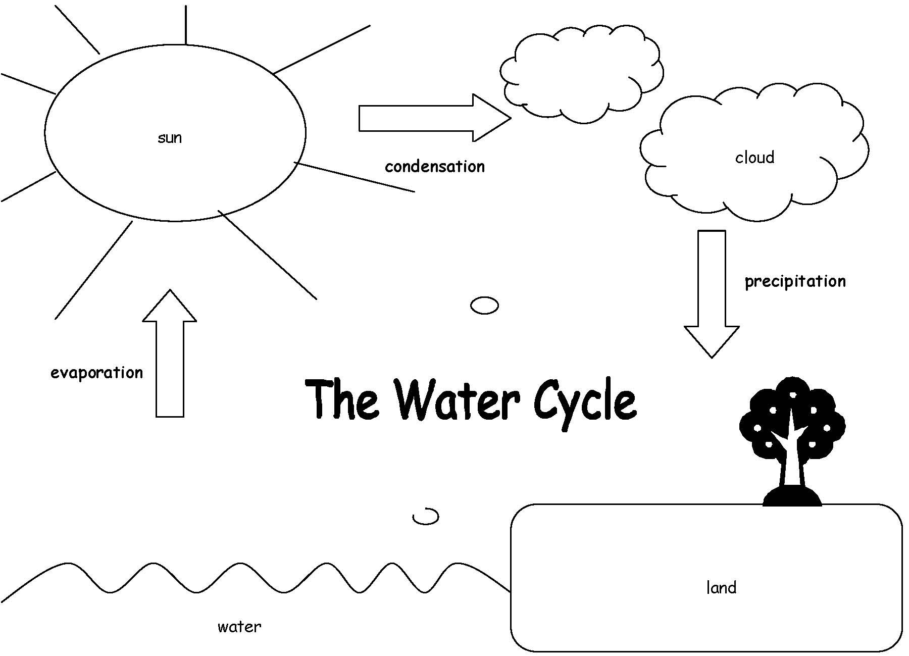 Water Cycle Worksheet Answer Key