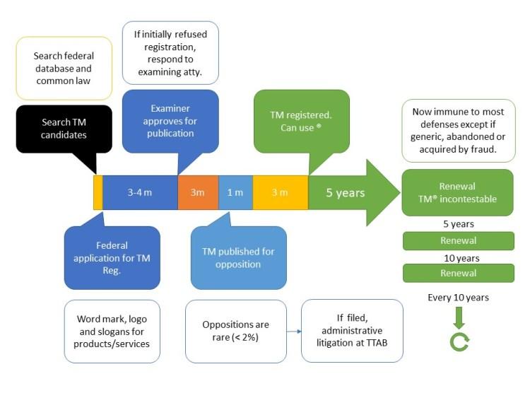 Trademark registration timeline of milestones in process