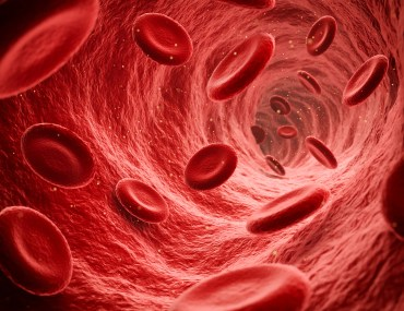 Red blood cells flowing through the blood stream