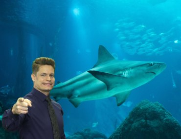 Shark Tank demonstrates why every startup needs patents