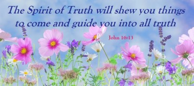 wild-flowers-scripture-john-16-verse-13