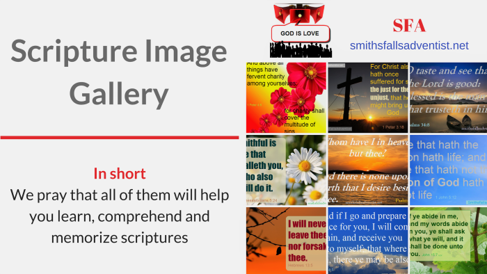 Illustration-Title-Scripture Image Gallery-text-image gallery