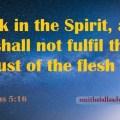 Sky-night-text-Bible verse