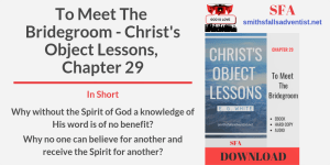 Illustration-Title-To Meet The Bridegroom. Christ's Object Lessons, Chapter 29-text-logo