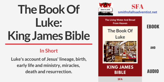 Illustration - Title - The Book Of Luke - text - Bible verse