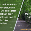 Illustration - Follow Christ in Matthew 16 verse 24 - text - Bible verse - background - forest