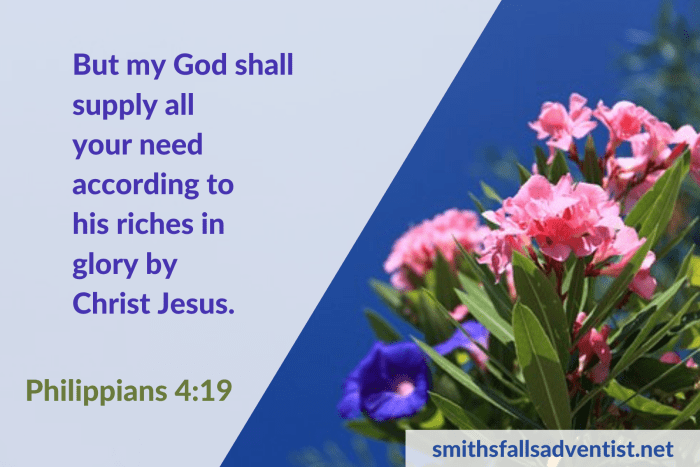 Illustration - Promises of God in Philippians 4 verse 19 - text - Bible verse - background - flowers