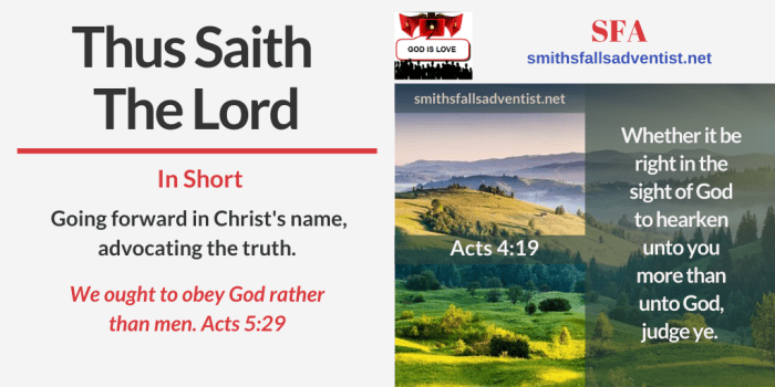 Illustration - Thus Saith The Lord in Acts 4 verse 19 - text - Bible verse - background - landscape - field