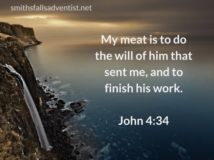 Illustration - background - see - text - Bible verse - My meat is to do His will in John 4 verse 34