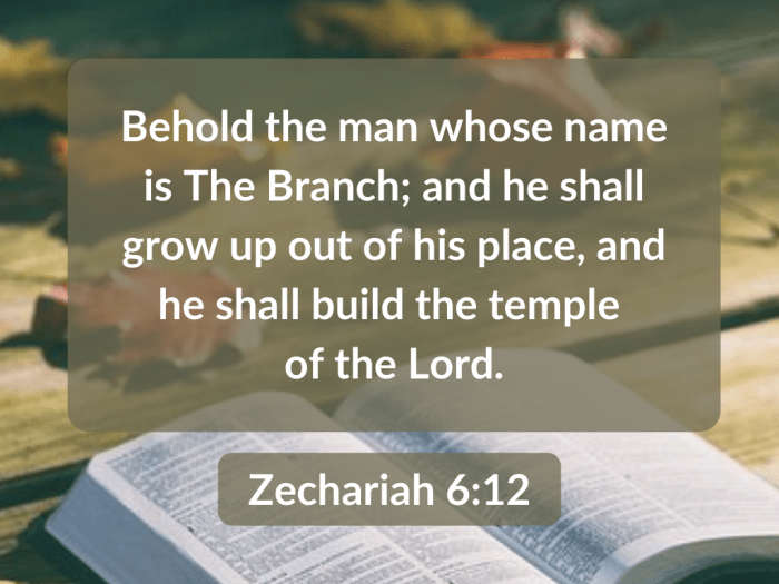 Illustration-background-open book on table-title-He shall shall build the temple of the Lord in Zechariah 6 verse 12-Bible verse