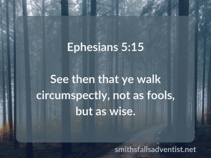 Illustration-background-forest-tall trees-title-Walk not as fools in Ephesians 5 verse 15-text-Bible verse