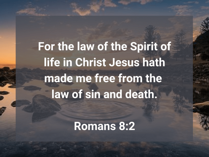 Illustration-landscape-lake-title-Law of the Spirit of life in Christ-text-Bible verse
