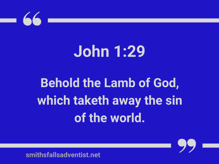 Illustration-light blue background-title-The Lamb of God takes away the sin-text-Bible verse