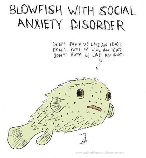 blowfish with social anxiety disorder