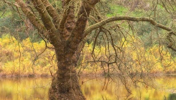 Mallard Lake_SMKanePhotos