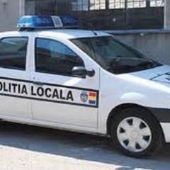 Politia Locala Satu Mare organizeaza concurs de ocupare a unor functii publice