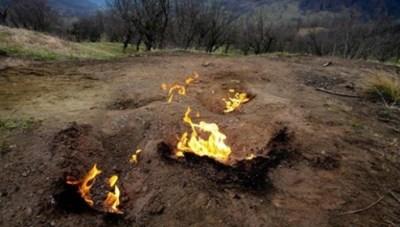 Pericolele arderii miristilor si vegetatiei uscate