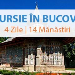 Excursie in Bucovina | 4 Zile | 14 Manastiri cu Olimpia Travel
