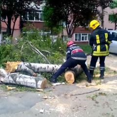 Pompierii sătmăreni au avut 19 intervenţii în perioada 23 -26.2017