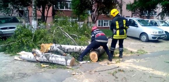 Pompierii sătmăreni au intervenit astăzi în şapte situaţii de urgenţă  generate de vijelii