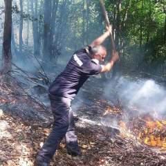 Incendiu de vegetatie in judetul Satu Mare