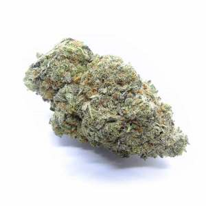 Strawberry Cough Cannabis Strain - Weed Delivery London