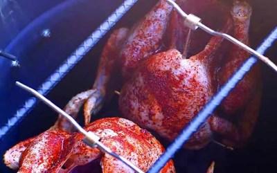 Pit barrel cooker review