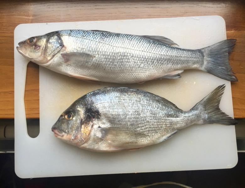 Big Green Egg – Does fish!