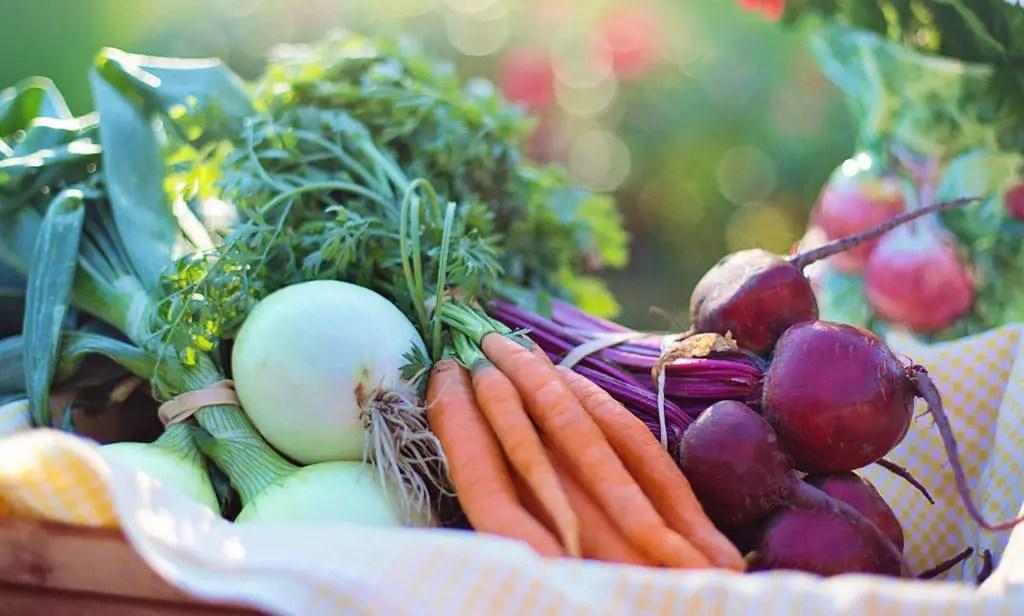 Carrots vegetables in basket