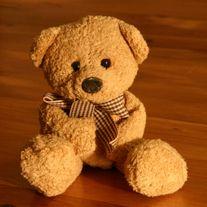 teddy bear- obit