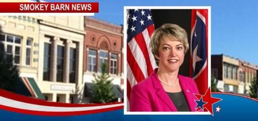 Ann Schneider Announces Candidacy For Springfield Mayor