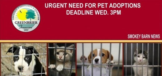 """Greenbrier Animal Control Says; """"Urgent! Adoptions Needed"""""""