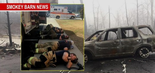 Local Firefighters Assist Gatlinburg - How You Can Help