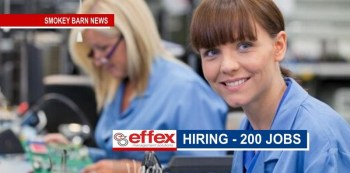 Effex Management Solutions - 200 Positions Open In Springfield