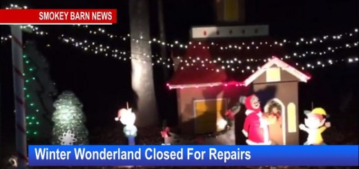 Winter Wonderland Closed For Repairs - Will Reopen Mon - Fri.
