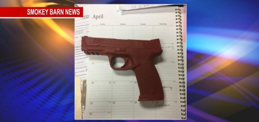 Fake Rubber Gun Used In Criminal Justice Class At Springfield High Causes Stir