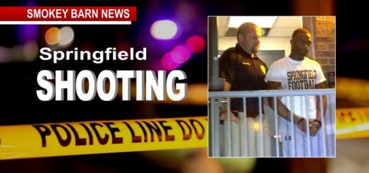 Teen Fights For Life Following Springfield Shooting
