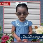 Springfield Girl Dies Following Freak Accident