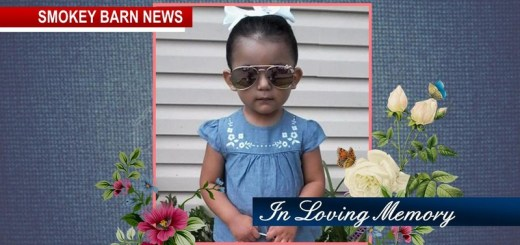Springfield Girl Dies Following Freak Accident