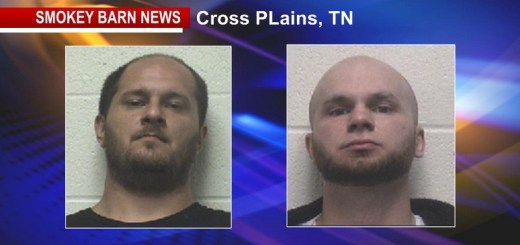 SHERIFF: Two Arrested In Cross Plains Burglaries