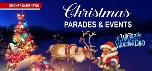 "Christmas Parades, Holiday Events, Light Shows & The Annual ""Winter Wonderland"" Of 2018"