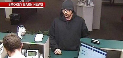 Lunch Hour Bank Robbery In Hendersonville Sparks Manhunt