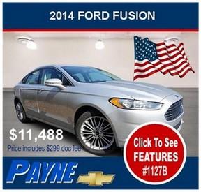 Payne 2014 ford fusion 1127b flag 300