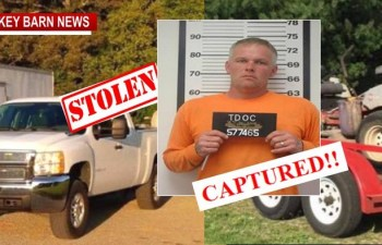 Car-Jacked Truck/Trailer Suspect Apprehended