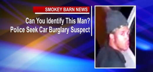 Can You Identify This Man? Police Seek Car Burglary Suspect