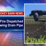 Meowing Drain Pipe Triggers Feline Rescue In Millersville