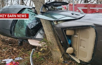 Driver Survives Violent Rollover Crash Near Orlinda