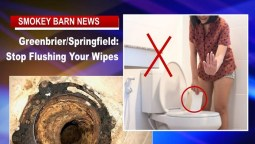 Greenbrier/Springfield: Stop Flushing Your Wipes