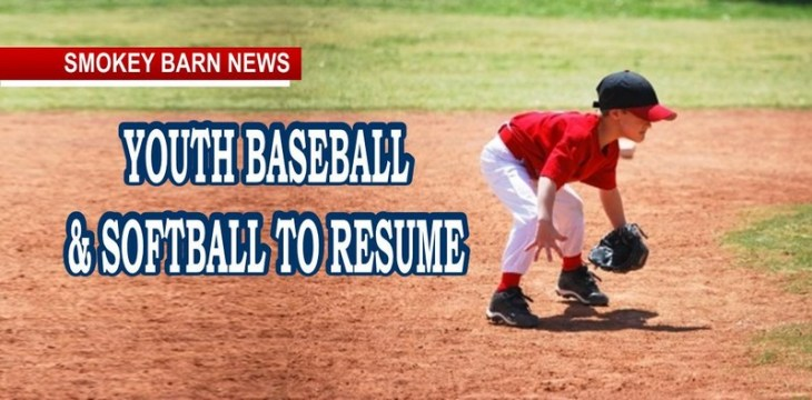 Youth Baseball To Resume Under Gov. Lee's Exec. Order No. 38